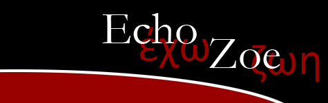 Welcom to echozoe.com